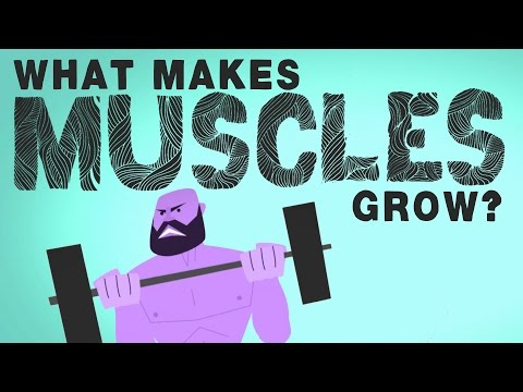 musclesgrow
